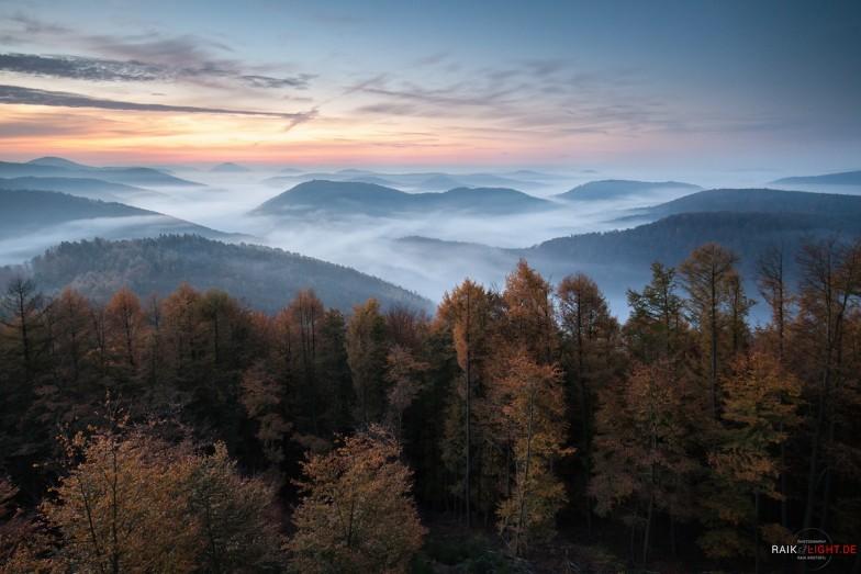 Deutschland,Forsthaus Annweiler,Kirschfelsen,Pfalz,Wellbachtal