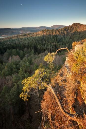 Pfälzerwald, Altendahn, Dahn, Haferfelsen,Schützenwand