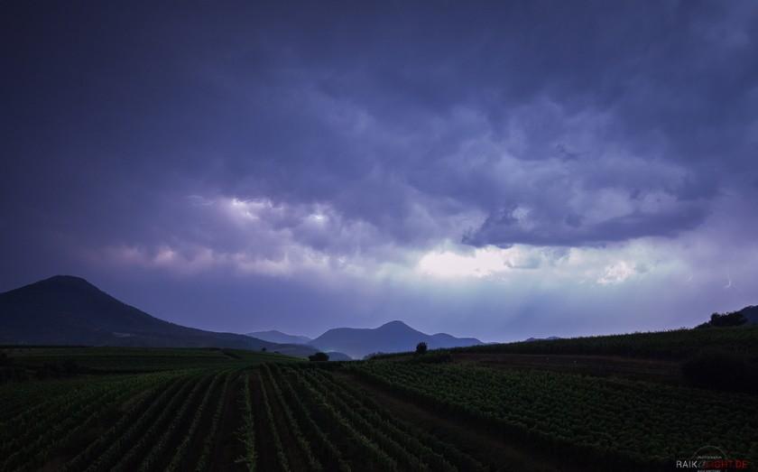 Gewitter zwischen Wein und Wald