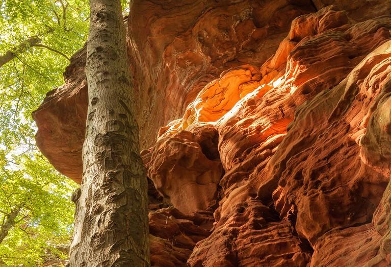Rötzenfelsen - Pfälzerwald