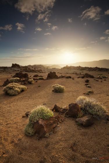 Teide Nationalpark - Teneriffa