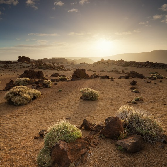 Teide Nationalpark - Teneriffa