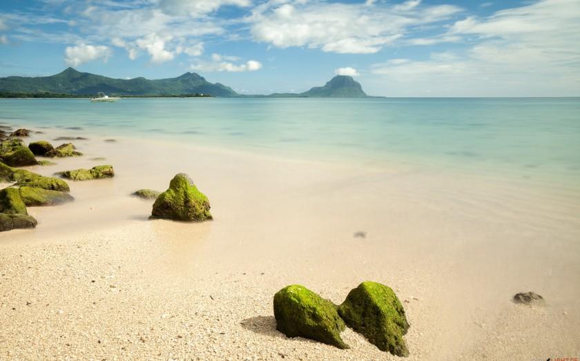 Tamarin - Mauritius