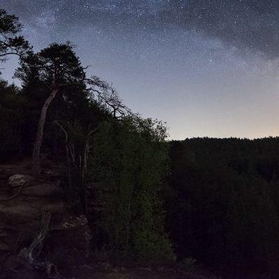 Milchstraße über dem Pfälzerwald