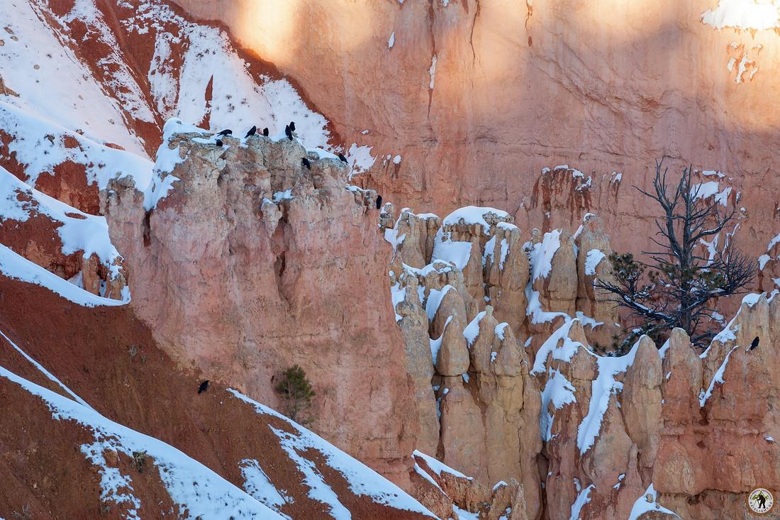 Bryce Canyon - Sunsetpoint