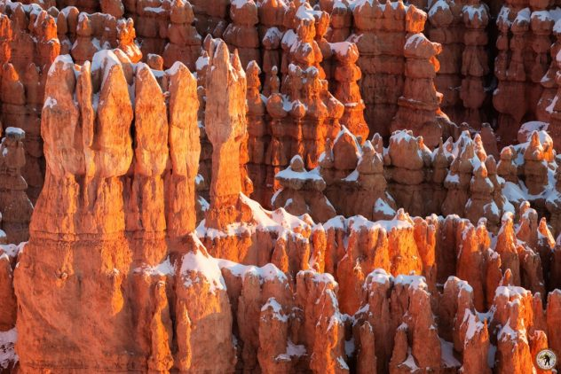 Bryce Canyon - Inspirationpoint