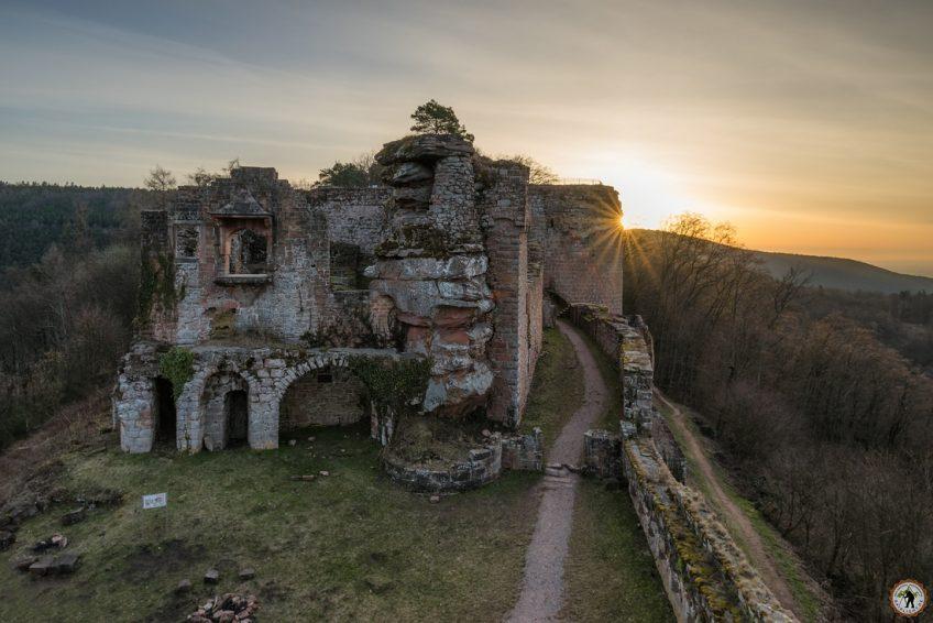 Burg Neuscharfeneck Landauer Hütte Dahner Felsenland Wandern