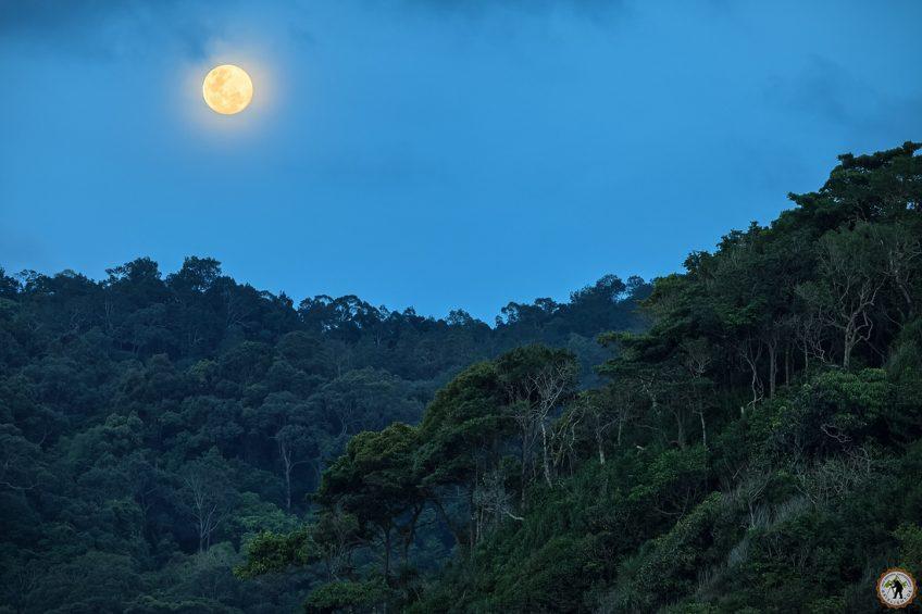 Pulau Redang Moonrise Taaras