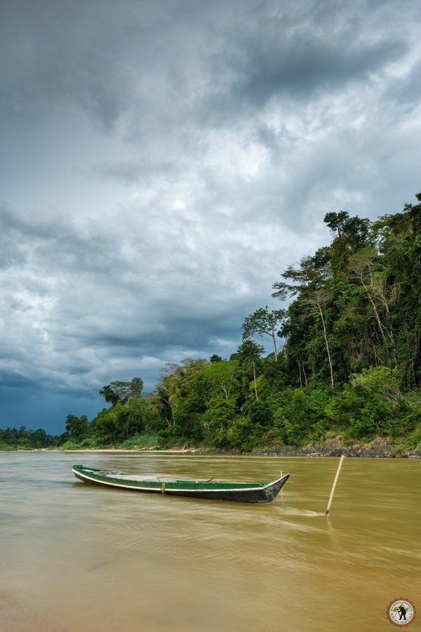 Taman Negara River View Muitiara
