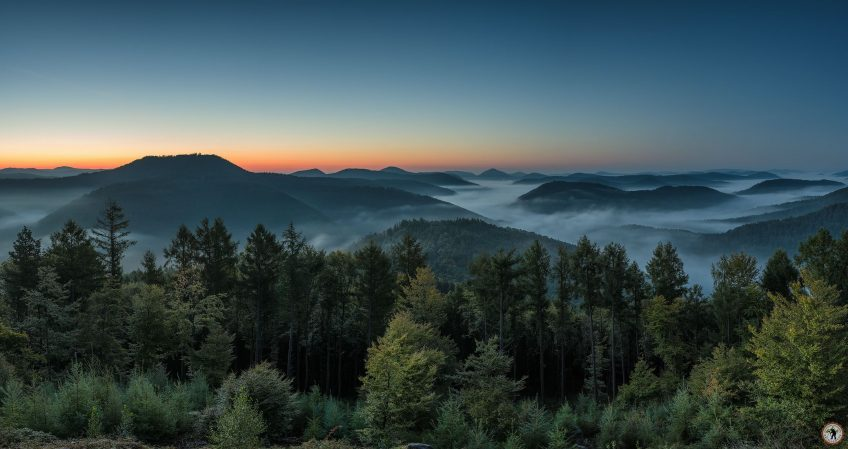 Pfälzerwald Nebel Herbst Pentax K-1