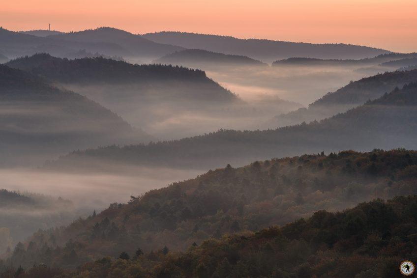 Schlüsselfelsen Pfälzerwald