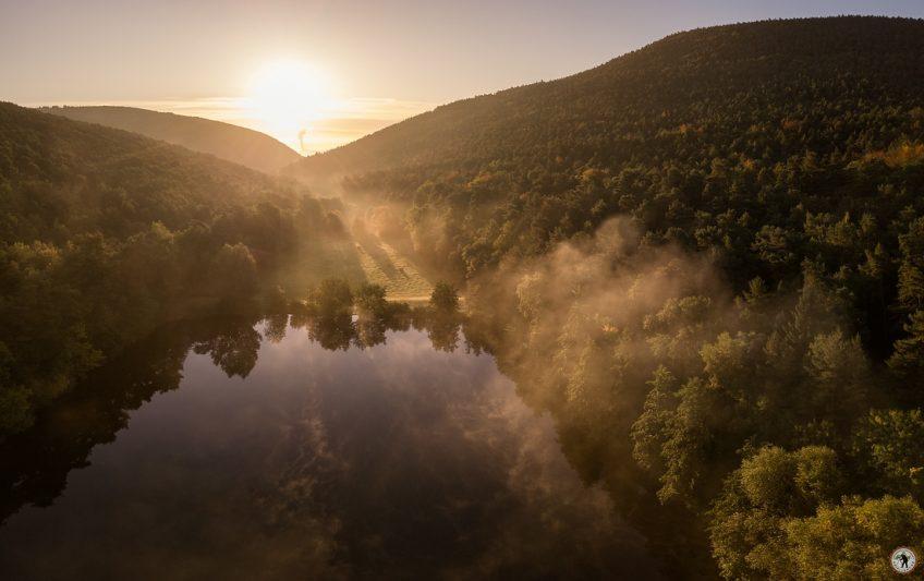 Morgennebel im Pfälzerwald DJI Mavic Pro