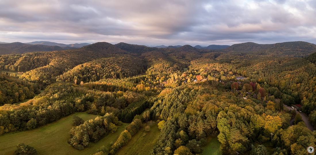 Pfälzerwald Herbst DJI MAVIC