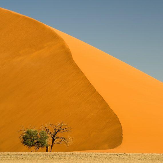 Düne 45 Namibia Namib Sossusvlei