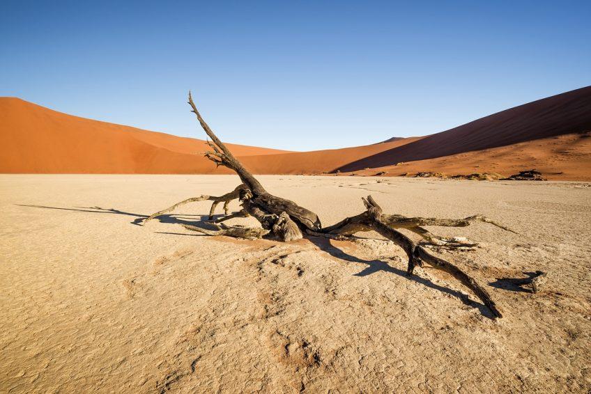Deadvlei Namib