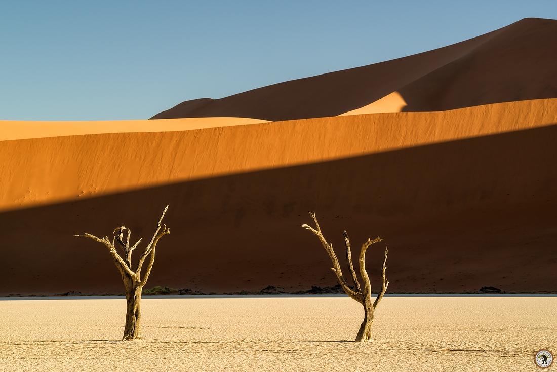Deadvlei Namib Desert Namibia