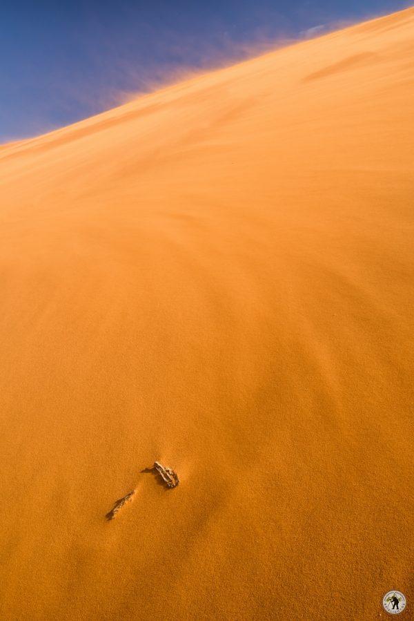 Namib Desert Sandstorm