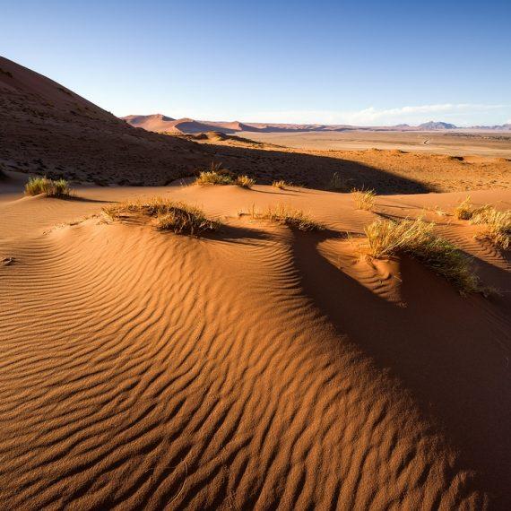 Düne 19 Namib