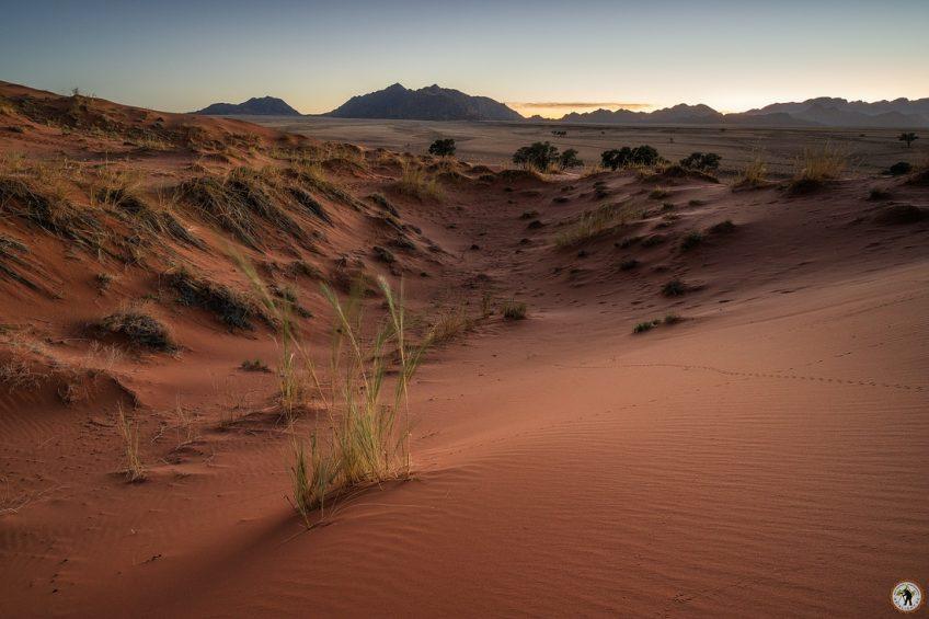 Elim Düne Namib