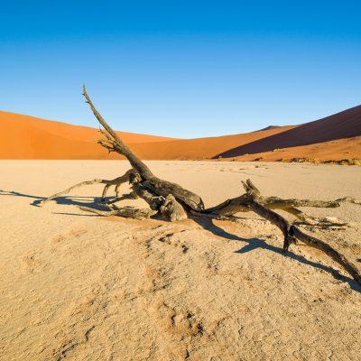 ERSTELLEN EINES KAMERA FARBPROFILS x-rite Namibia