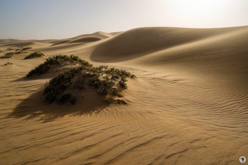Dorob Dunes © Raik Krotofil