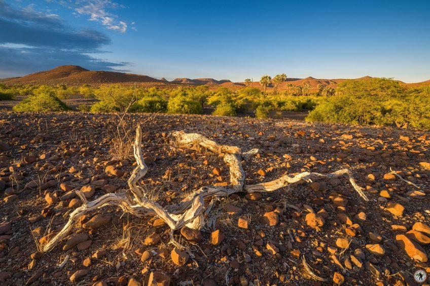 Damaraland © Raik Krotofil Palmwag