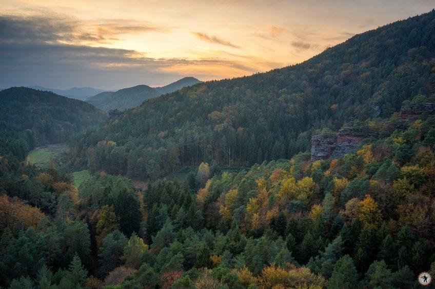 Pfälzerwald © Raik Krotofil