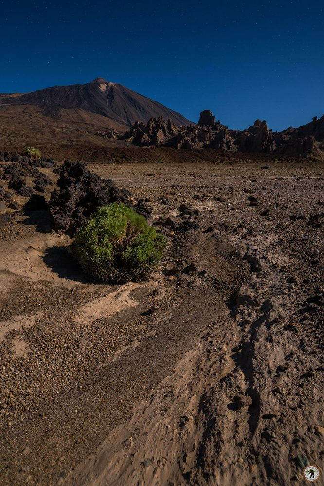 Teide Nationalpark Teneriffa