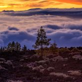 Teneriffa Nationalpark Teide