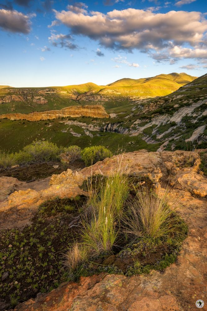 Golde Gate Highlands Nationalpark