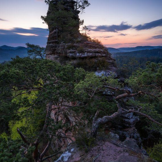Lämmerfelsen im Pfälzerwald, Morgenlicht, Dahner Felsenpfad, Wandern