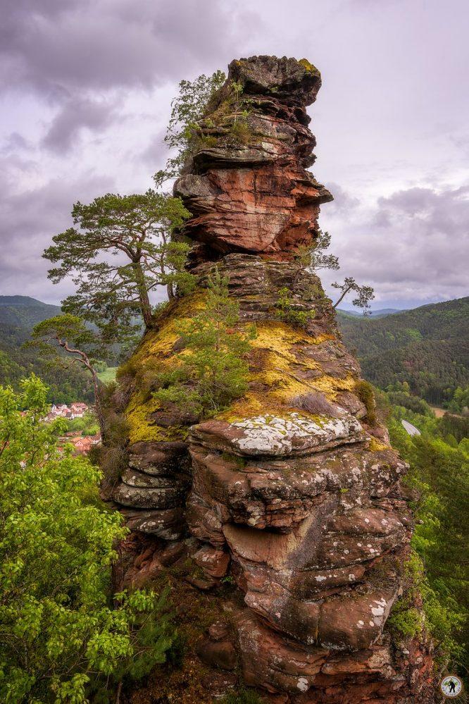 Pfälzerwald, Frühling, Mai, Felsen, Wandern, Regenwetter