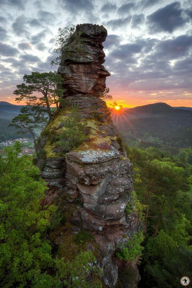 Pfälzerwald, Frühling, Mai, Felsen, Wandern