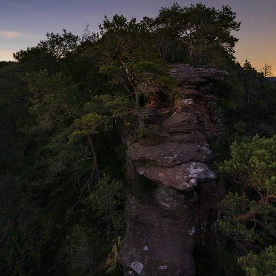 Sommernacht Pfälzerwald