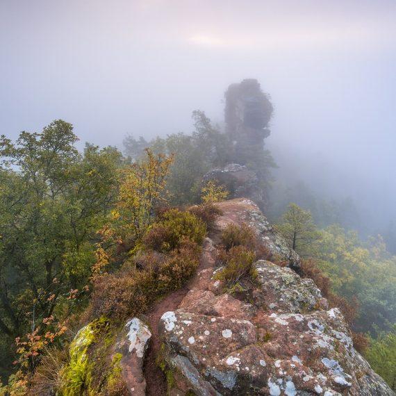 Geierstein Lug Pfälzerwald