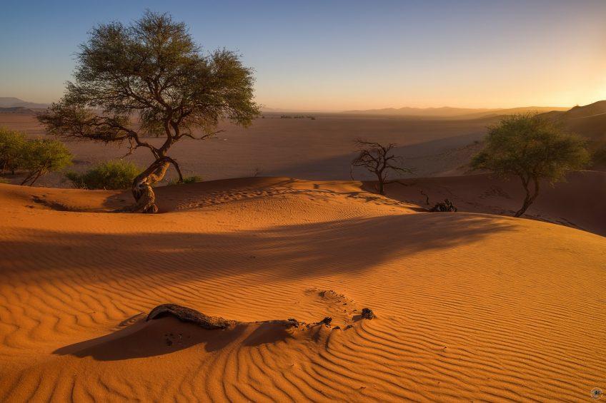 Elim Dune Namibia
