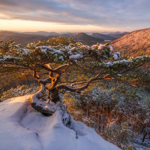 Rötzenfelsen im Winter