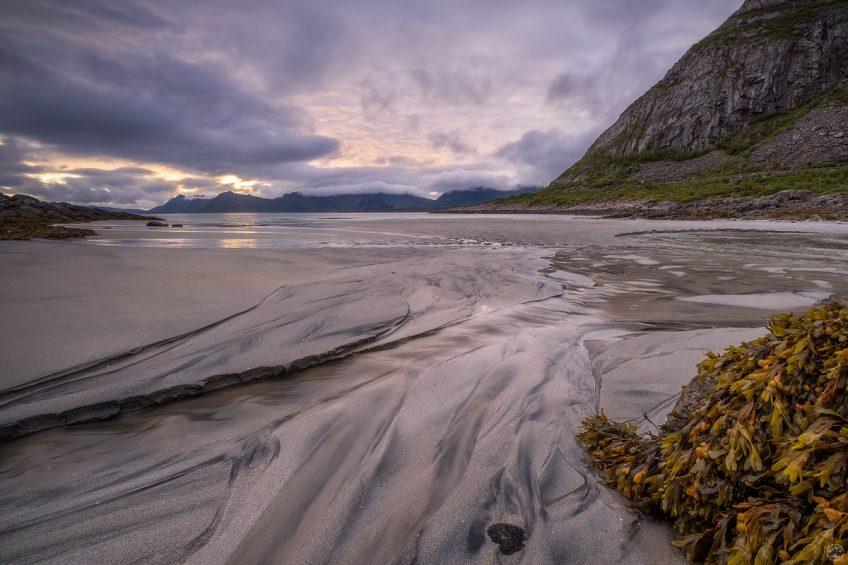 Low Tide Lofoten
