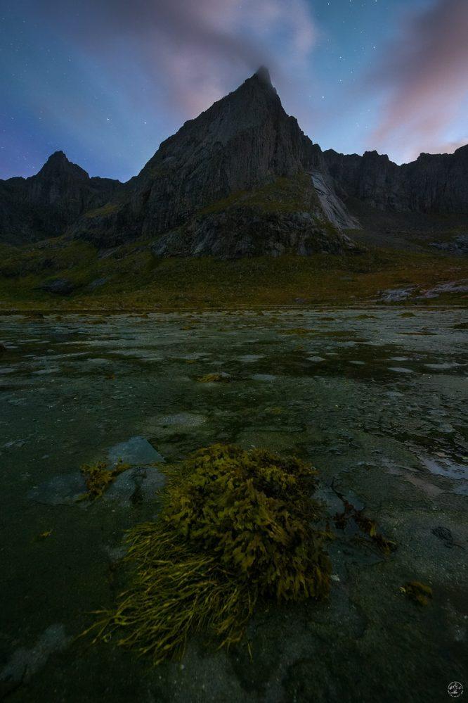 Twilight Lofoten Flakstad