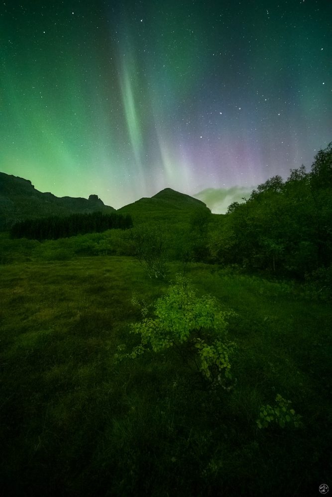 Nordlicht Polarlicht Lofoten Herbst